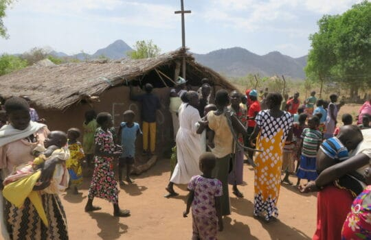 POSTŘEHY ZPOVÁLEČNÉHO JIŽNÍHO SÚDÁNU | ČLÁNEK ZE ŽIVOTA VÍRY